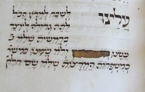 censored manuscript of aleinu